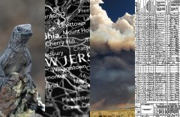 Mosaic of images including an iguana, a map of New Jersey, and a cloud of smoke