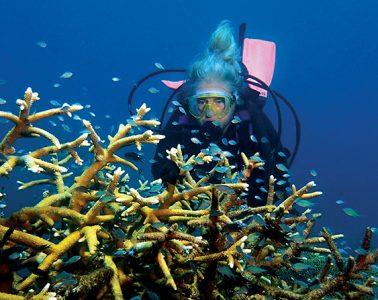 Susan Copelas scuba diving near coral reef