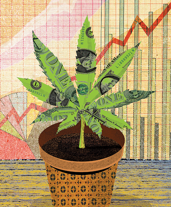 a collage illustration of a cannabis leaf in front of a rising business bar graph
