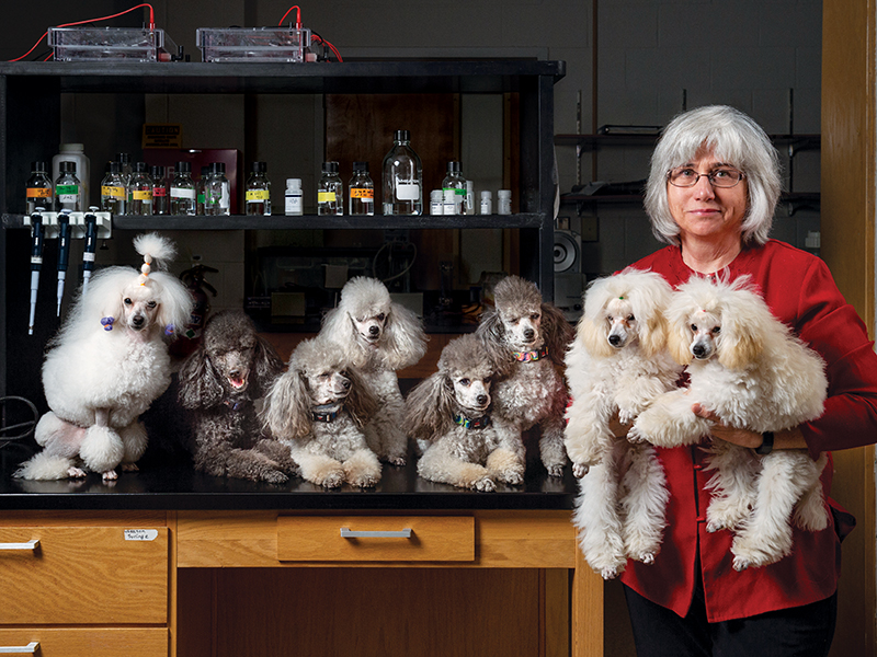 Barbara Hoopes holding two small poodles and 6 more next to her