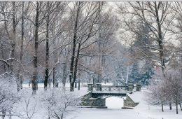 Willow Path bridge in snow