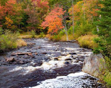 Adirondack stream in autumn