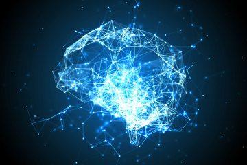 Computer representation of the human brain
