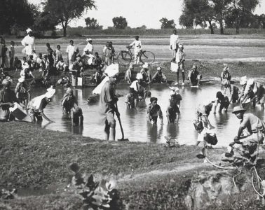 individuals at work in pond