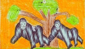 Artwork of gorillas from Ugandan schoolchildren