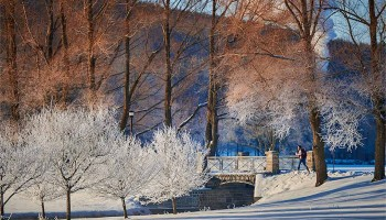 Winter scenic of Payne Creek and Willow Path