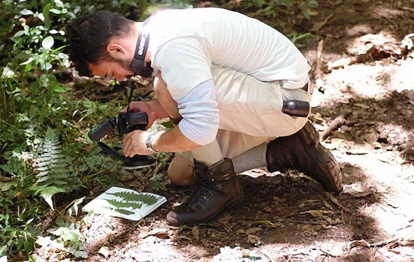 Wes Testo '12 photographing ferns in Costa Rica