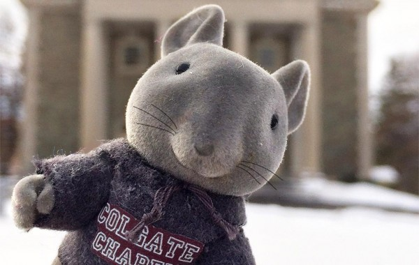Toy rat in a Colgate sweatshirt pictured in front of Memorial Chapel