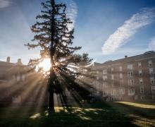 Scenic view of the Academic Quad