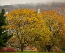 Colgate in the fall