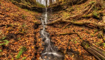 Beautiful fall waterfall amidst foliage.