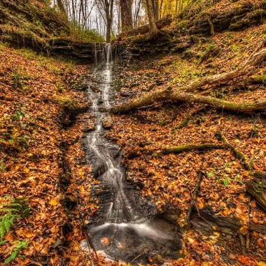 Beautiful fall waterfall amidst foliage.
