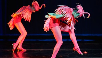 Students perform in bird costumes