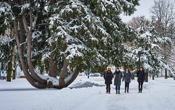 Students walk past snow-covered Norway spruce tree