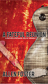 A Fateful Reunion book cover