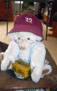 A bear wearing a Colgate beanie.