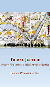 Tribal Justice book cover