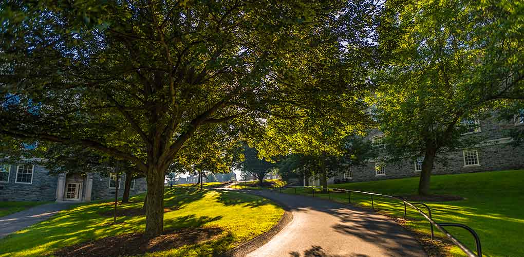Sun filters through the trees on the approach to the Academic Quad between the Chapel and Lawrence Hall