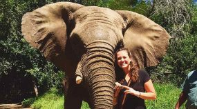 Sally Langan '17, a sociology major, poses with an elephant in Cape Town.