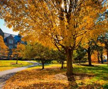 Fall foliage on the Residential Quad, with Andrews Hall in the background