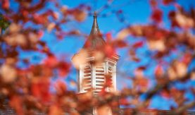 Cupola on campus seen through out-of-focus red fall foliage