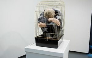 Man in a bird cage