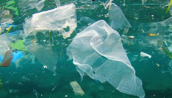 Plastic debris in ocean waters