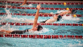 Female swimmers in the pool, mid-race
