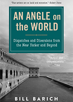"Photo of the cover of the book ""Ang Angle on the World"""