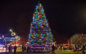 Christmas tree lit up on the Hamilton Village Green