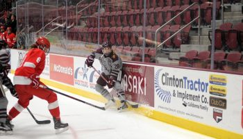 Women's hockey player along the boards vs. Cornell