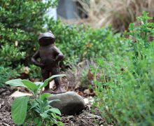 A frog statue in Amy Nelson's garden, under which her chicken, Speckles, was laid to rest