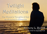 Twilight Meditations book cover