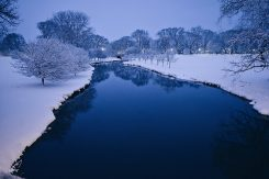 Winter scene with snow and stream