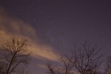 Constellation Orion over the trees at Colgate