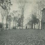 A Landscape Plan and the Bicentennial Landscape Project