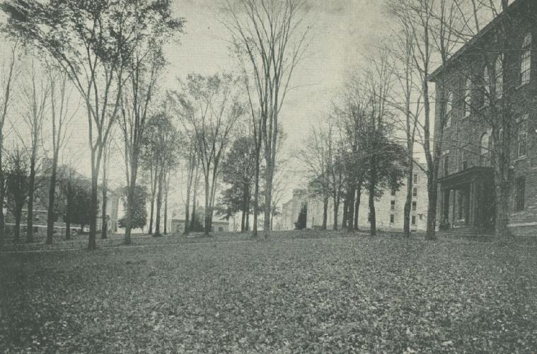 Academic Quad, c. 1915