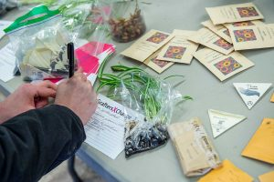 Participant fills out seed form on table filled with seed packets and plants.
